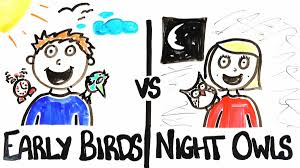 朝型人間 夜型人間の比較