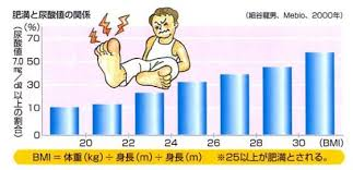 高尿酸血症と肥満・糖尿病・脂質異常症