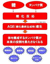 タンパク質の糖化反応の説明図
