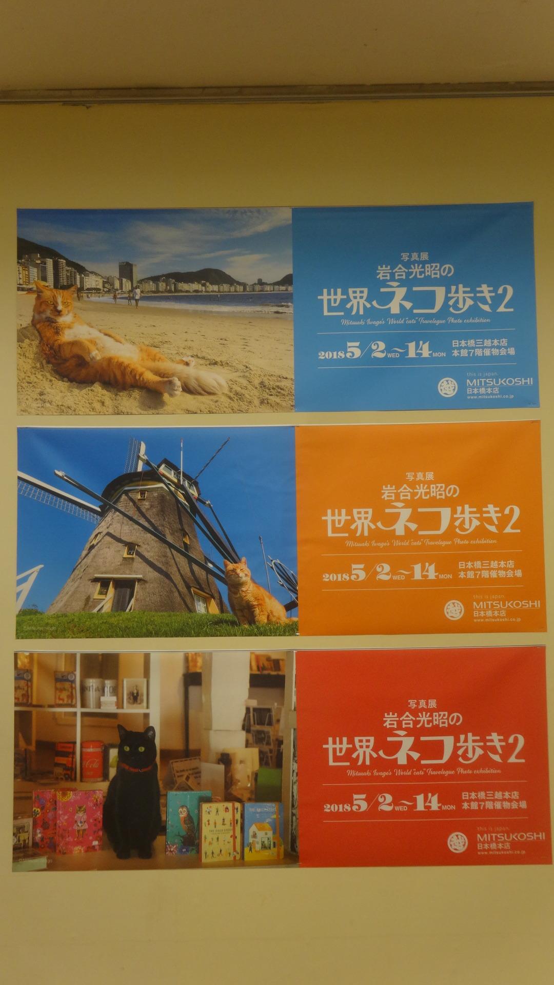 岩合さんの写真展のポスター