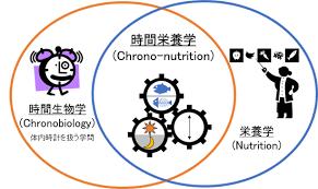 栄養学と時間生物学のオーバーラップにより時間栄養学のフィールドが深まってきたことを示す図