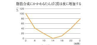 脂質合成に関わるタンパク質の発現は夜に増加することを示したグラフ