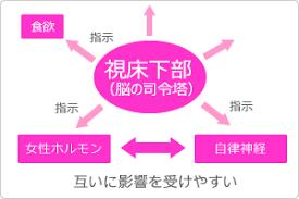 視床下部は女性ホルモンの分泌も調節していることを示す図