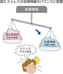 ストレスにより自律神経のバランスが乱れることを示す図