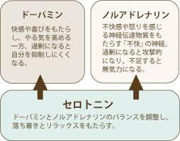 セロトニンの精神安定作用を示す図