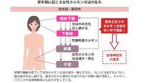 自律神経失調症と女性ホルモン分泌異常のリンクを示す図