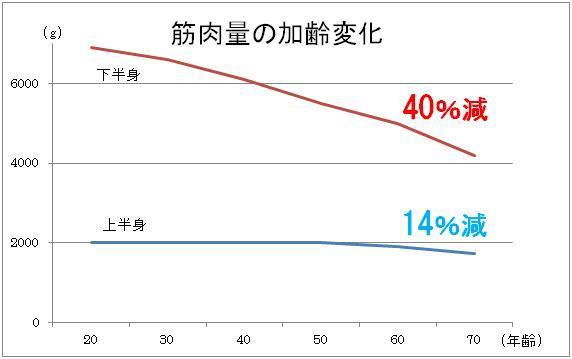 下半身の筋肉量の加齢による減少を示すグラフ