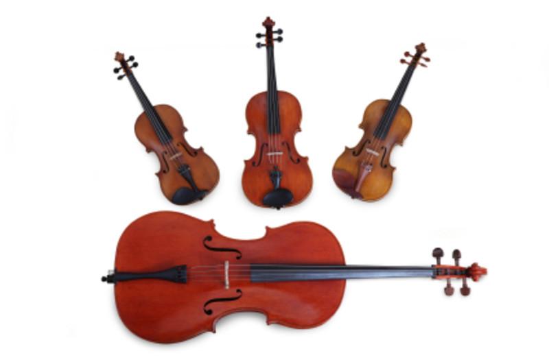 弦楽四重奏で使用される楽器の写真