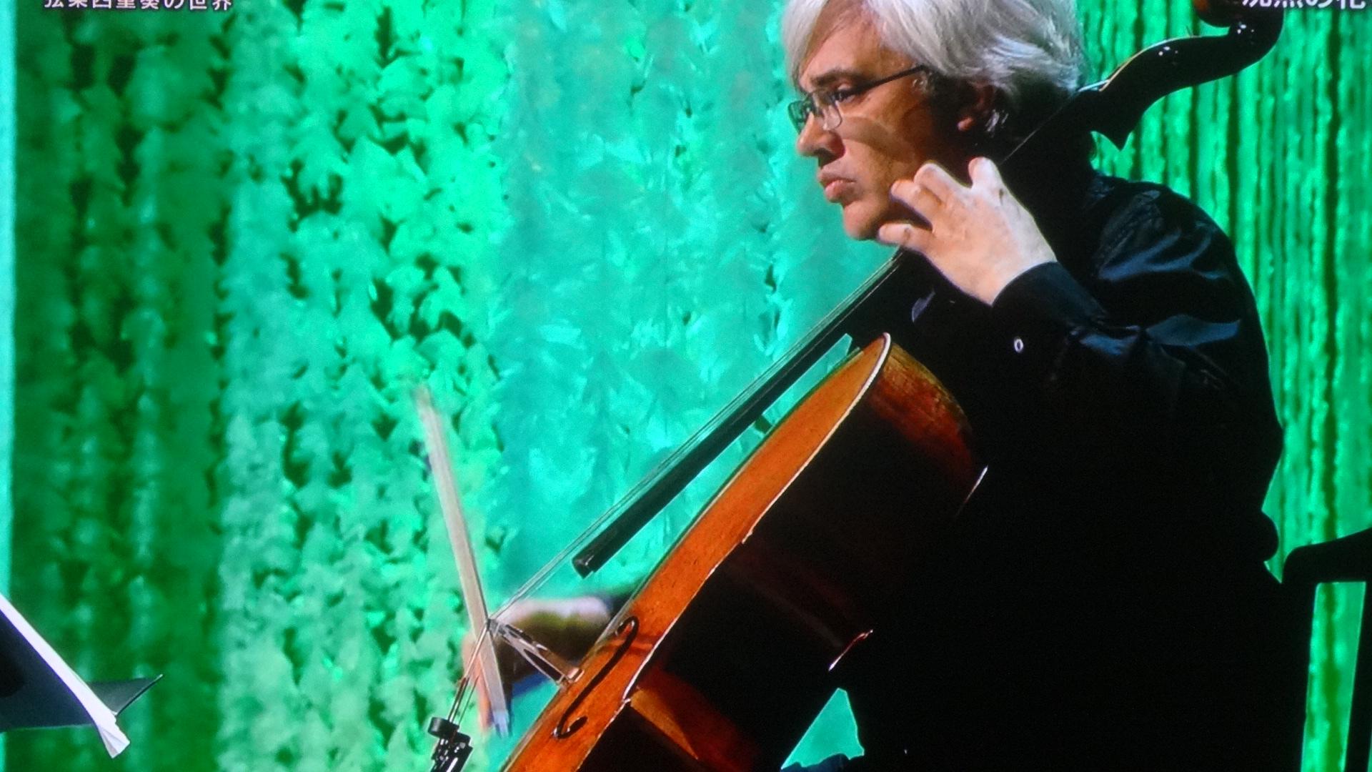 チェロの奏者の写真1