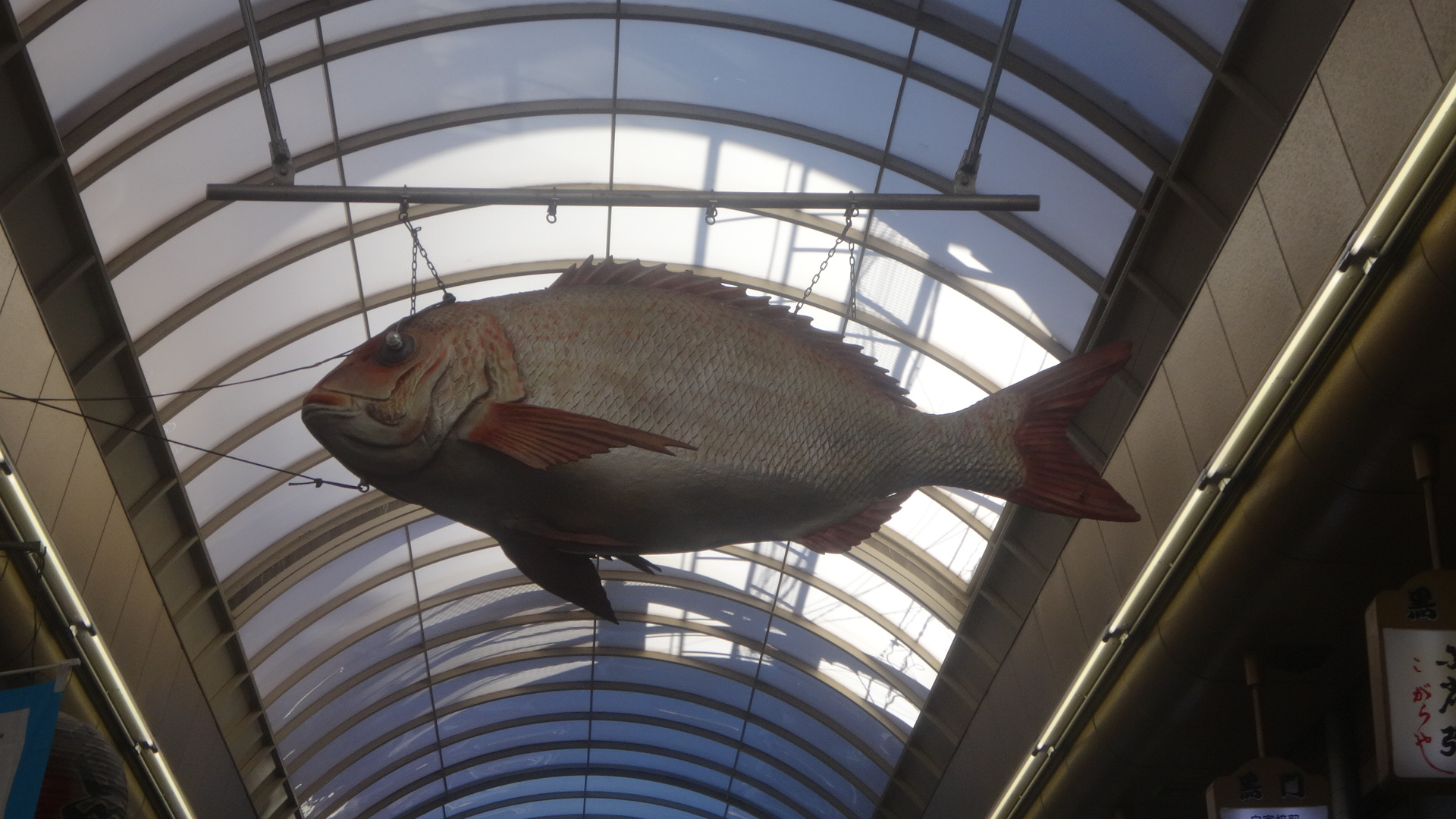 空中遊泳している巨大な魚のオブジェ2