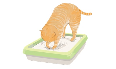 ネコが砂を掻けている様子のイラスト