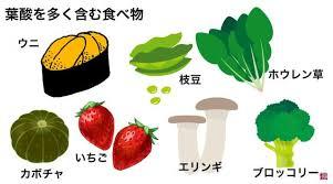 葉酸を多く含む食材をまとめた図