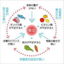 貧血の原因となる食事に関する要因をまとめた図