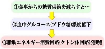 糖質制限でケトン体が生じて燃やされるメカニズムの説明図