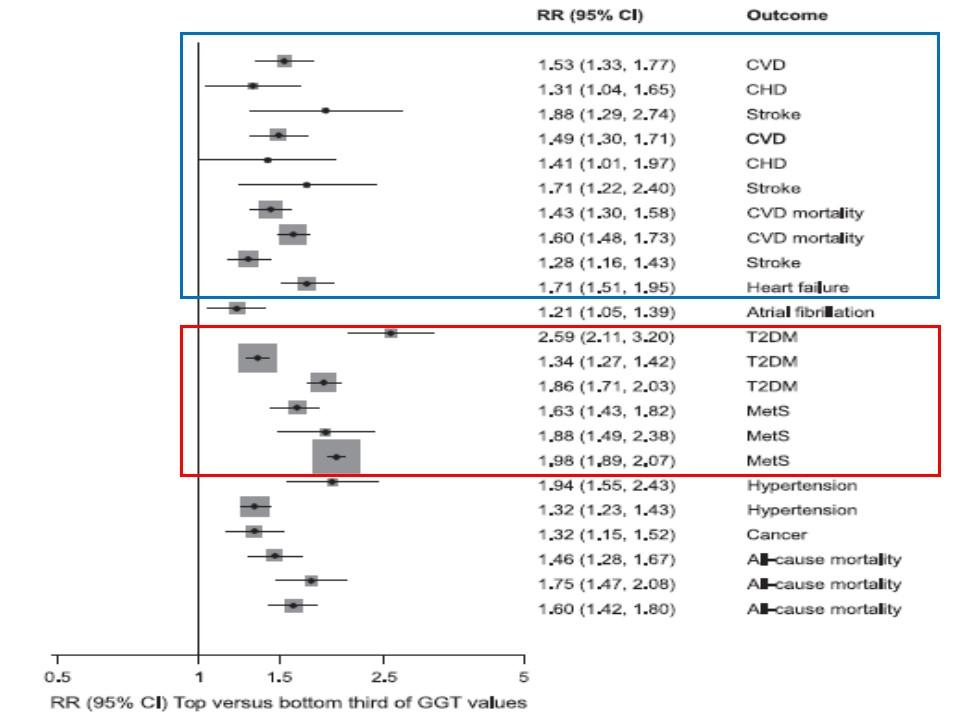 γGTP高値が生活習慣病 CHD CVDの発症リスクを高めることを示す図