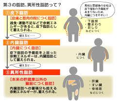 異所性脂肪について説明した図