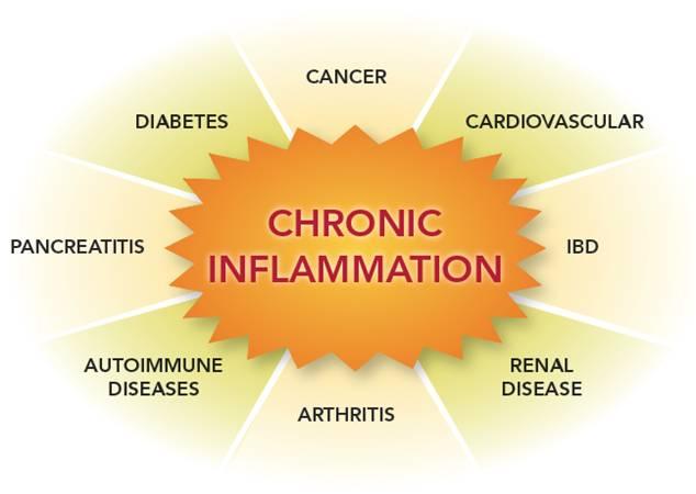 慢性炎症が誘導するさまざまな悪影響をまとめた図