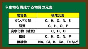 生体を形作るタンパク質 脂質などを構成する元素の種類を示す表