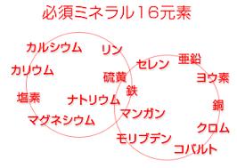 必須ミネラルの16種類を示す図