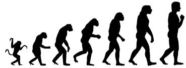 人類が進化する過程を示した図