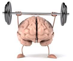 大きくなった脳の姿