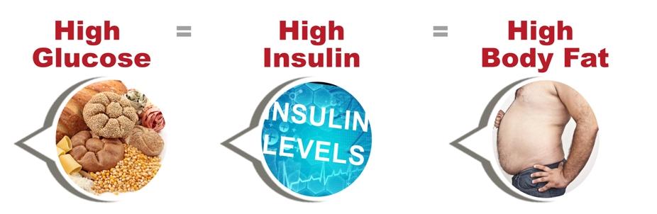 余分な糖質は インスリンの作用により脂肪として貯蔵されることを示す図