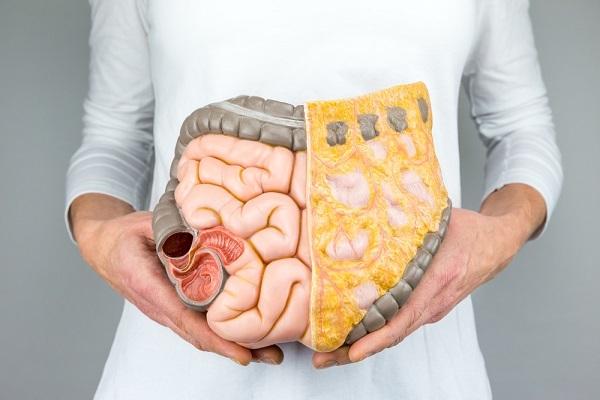 蓄積している内臓脂肪の写真