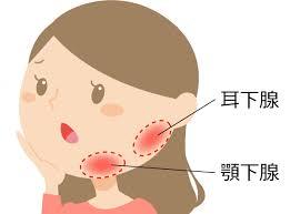 唾液腺 顎下腺 舌下腺の腫れを示すイラスト