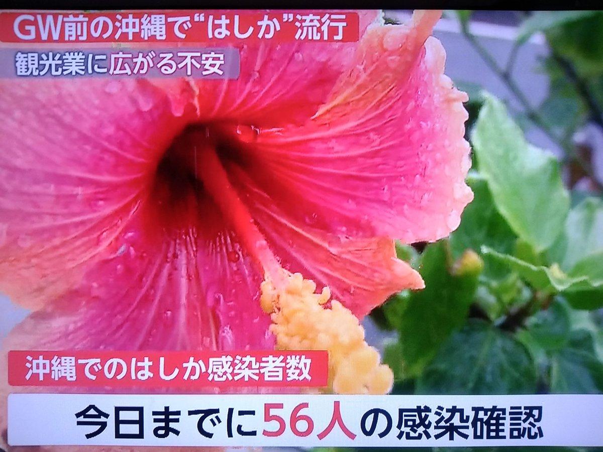 沖縄で麻疹が流行していることを伝えるニュース
