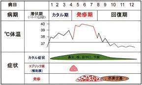 麻疹の臨床経過図