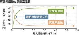 有酸素運動 無酸素運動の酸素消費量の時間的差異の解説