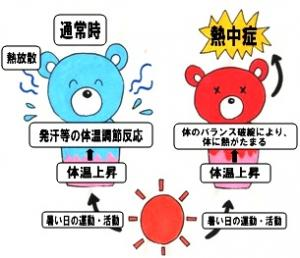 熱中症の本態は体温調節が上手く働かず 体温が下がらないことを示す図