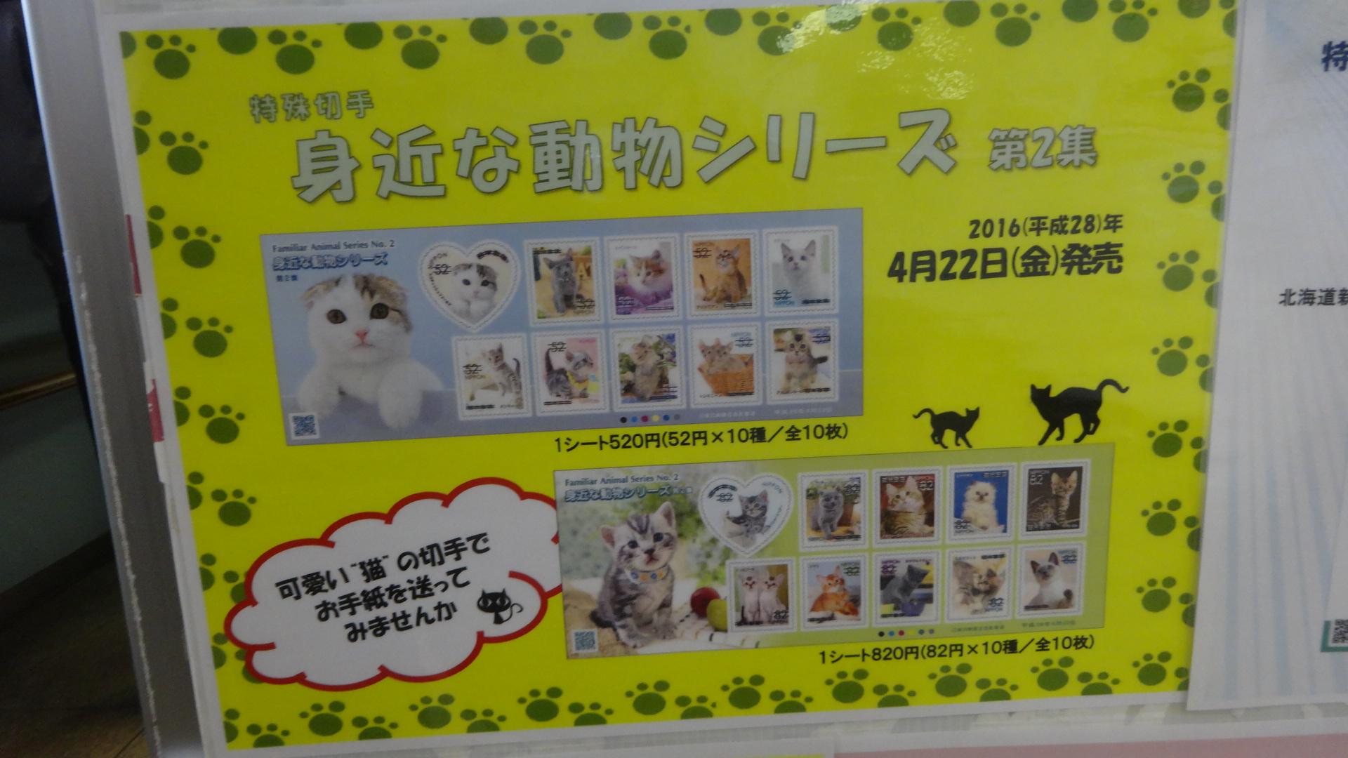 生まれたての20匹のネコs!