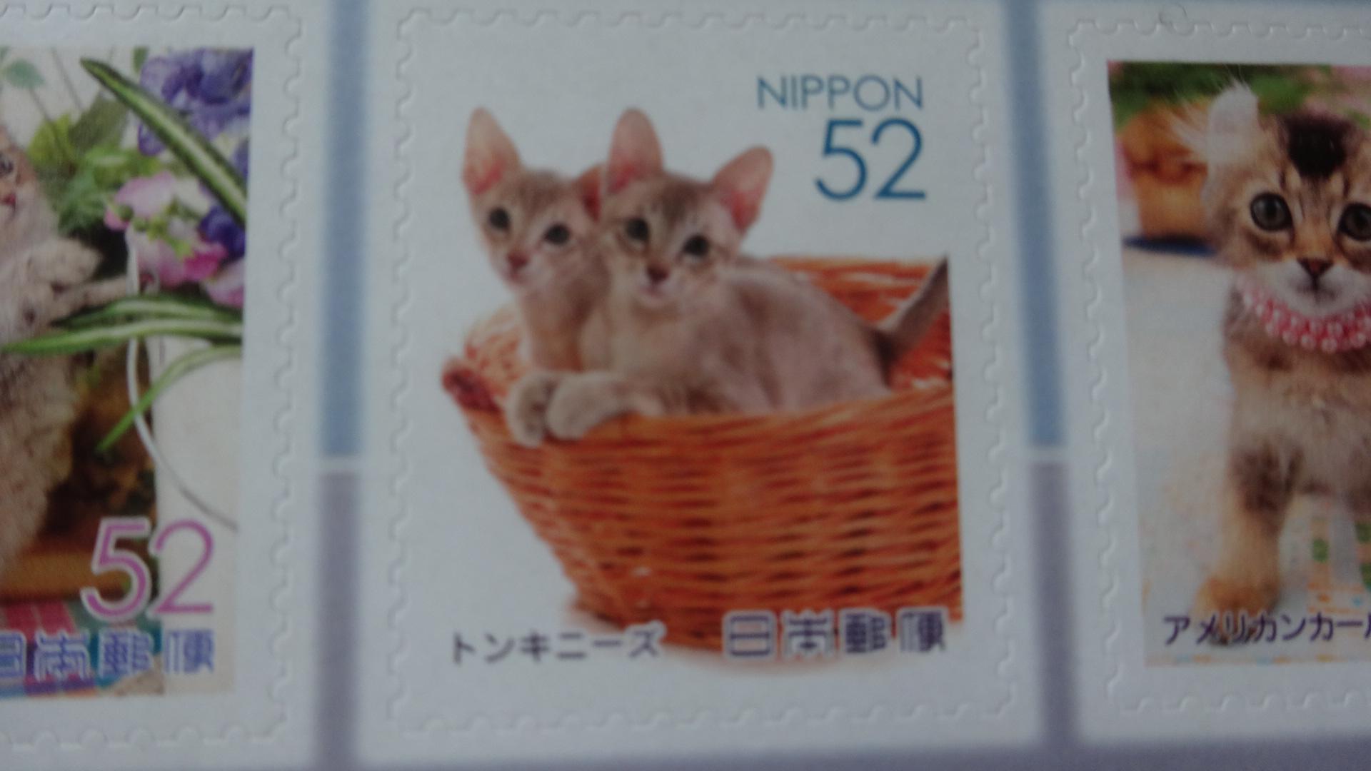 切手に描かれたトンキニーズ