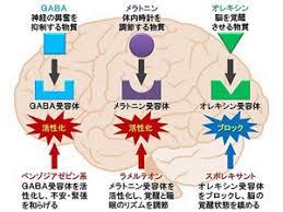 作用機序による睡眠薬の分類図