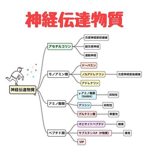 神経伝達物質の分類を示す図