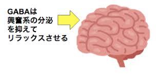 GABAは睡眠の維持に貢献していることを示す図