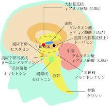 脳の中では こうしたさまざまな神経伝達物質が状況に応じて分泌されていることを示す図