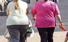 一緒に歩く同性の肥満の友人たち