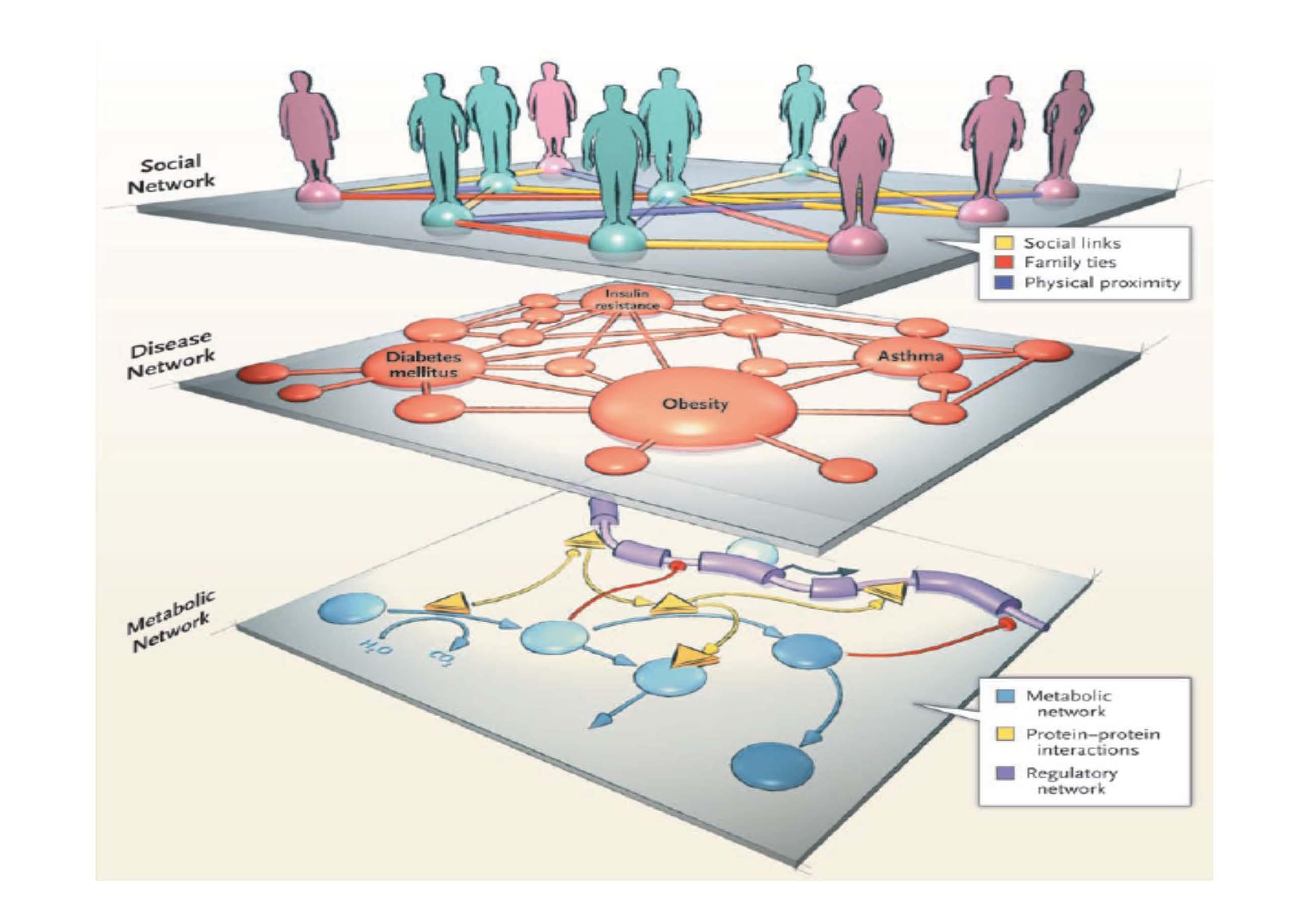 ネットワーク医学の説明図