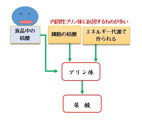 プリン体の合成過程