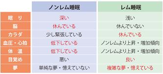 ノンレム睡眠とレム睡眠の比較表