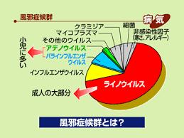 ライノウィルスの典型的な症状を説明した図