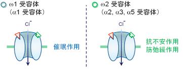 2種類のGABA受容体を示す図