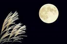 夜空に輝く満月