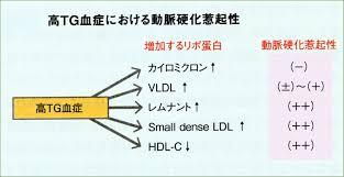 食後高脂血症でsdLDLが増加しHDL-Cが低下することを示す図