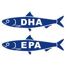 魚に含まれるEPA DHA