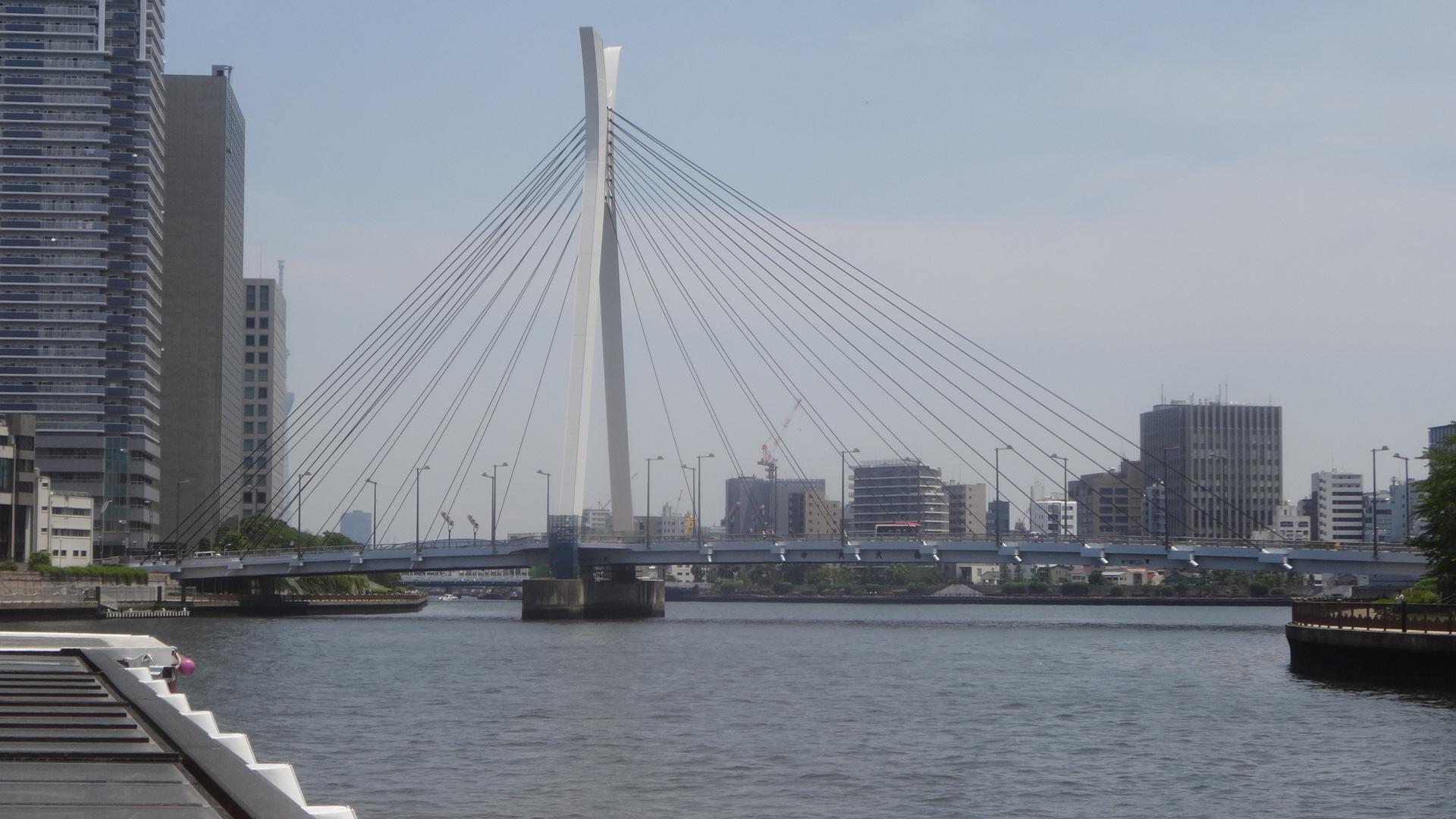 中央大橋の全景