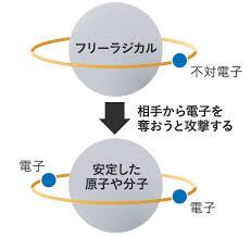 フリーラジカルが他の物質から電子を奪おうとする図