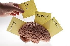 睡眠は 日中に得た情報の整理 記憶の定着を行っていることを示す図
